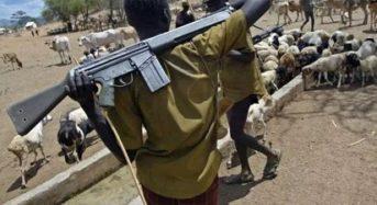 Nigeria: 86 killed in fresh herder-farmer violence