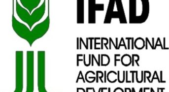 IFAD Tackles Farm Mechanisation Challenges In Ebonyi State