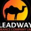 Tunde Hassan-Odukale Is Now Leadway Assurance CEO
