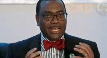AfDB Makes Strong Case For Climate Change Financing For Africa