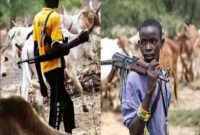 Herdsmen Attack Kills 25 In Kogi Communities