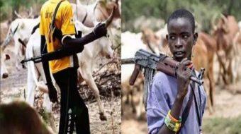 Herdsmen Attack Kills 25 In Kogi Communities