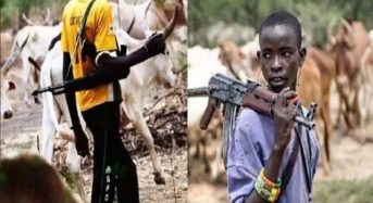 How Nigeria's cattle war is fuelling religious tension