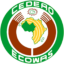 ECOWAS Adopts Flexible Currency Regime