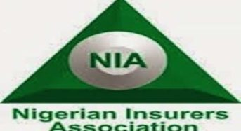 NIA Set To Invest New Chairman