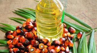 Nigeria Imports 1.3 Million Tonnes Of Palm Oil From Malaysia Yearly