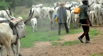 MESSAGE TO THE FEDERAL GOVERNMENT CONCERNING HERDSMEN CRISES.  BY OLUKOYA Isaac A.