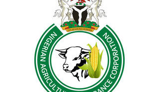 NAIC Assures Of Prompt Payment Of Compensation To Farmers  …As Flood Wrecks Farmlands Across States