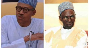 Shagari Pardoned President Buhari, Others Before Death- Son