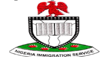 Nigeria Activates Web-Based Visa On Arrival Application