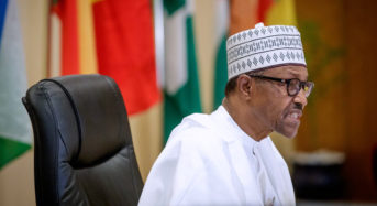 Presidency Defends Buhari's Directives To Security Agencies  ..Says Past Experience Caused Loss Of Lives And Property