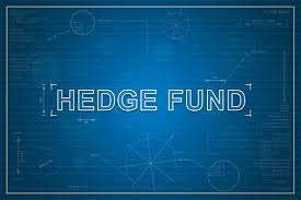 Hedge fund joins agency in $9bn Nigeria declare – Eire