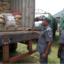 Customs Strike Force To Intercept Goods At Ports