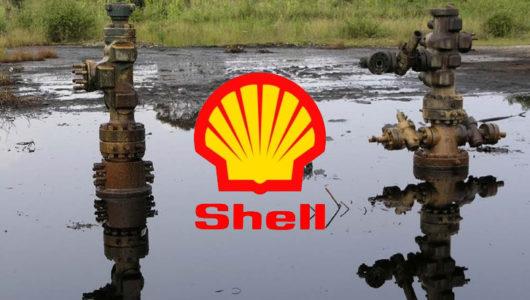 Shell's Oil Facility Spills 213 Barrels Of Crude Into Ikarama Community In Bayelsa