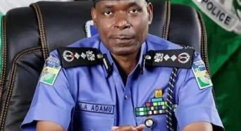 Police To Sustain Collaboration With OPC In South West — IGP