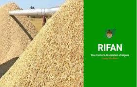 Rice Farmers Says $400Mn Worth Of Rice Smuggled Into Nigeria From Benin Republic