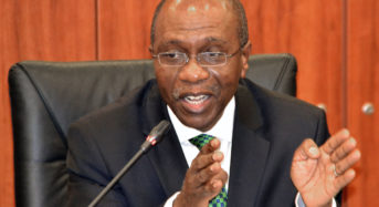 CBN Urge Banks To Expand Credit To Agric Sector To Boost Food Production