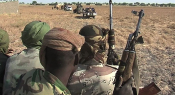 Africa Needs Professional Armies To Contain Armed Groups-US  …Urge Improvement On Human Rights