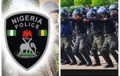 Man Murders Brother In Kaduna