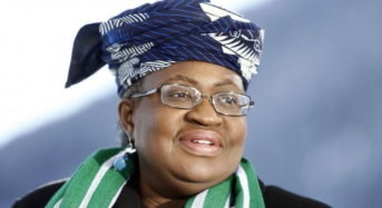 Intimidating Credentials Of Okonji-Iweala Stands Her Out