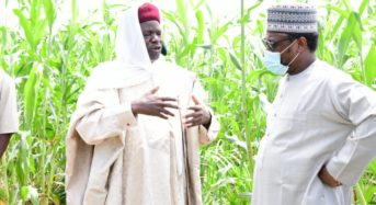 Niger State Push Up Livestock, Dairy Investment With Bobi Grazing Reserve