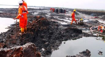Ogoni Remediation Project: X-Raying Commitment Of Partners And Shell Response Initiative