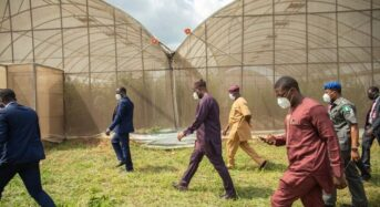 Oyo State Approves  $1.2 Million For STEP Agribusiness Initiative