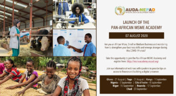 Panafrican MSME Academy Webinar Holds In September