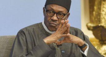 Buhari Not Competent To Secure Nigeria- NEF