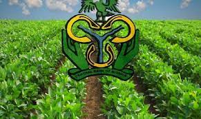 CBN Intervention In Agric Sector Touching On Almost Every Aspect