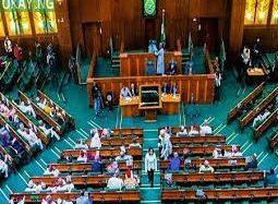 House Of Reps Probe Utilisation Of $18Million NPA Insurance Fund