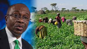 Food Security: CBN Makes N756.5 Billion Available To Smallholder Farmers