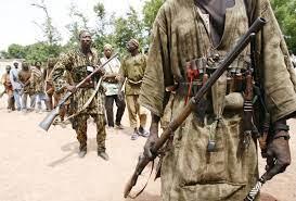 Borno State Engage Hunters To Fight Bandits