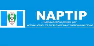 Human trafficking: NAPTIP rescues 100 victims in S'East in 6 months