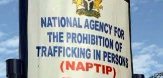 NAPTIP intercepts, rescues 104 human trafficking victims within 2 weeks