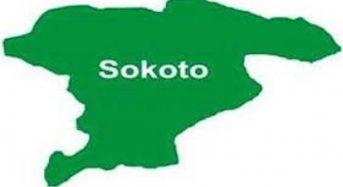 NGO sensitizes 200 Sokoto youths on gender-based violence