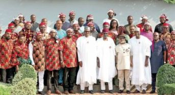 Igbo Youths Happy With Ohanaeze Over Meeting With Buhari