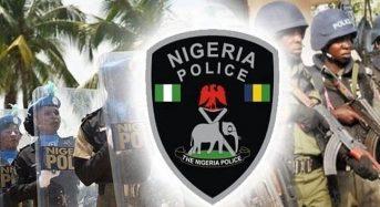 Police rescue 2 stolen babies in A'Ibom