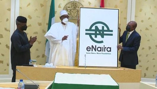 eNaira: Nigeria Becomes Africa's 1st With Digital Currency